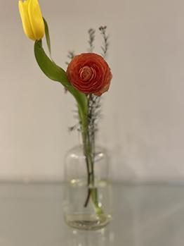 Flores Granada